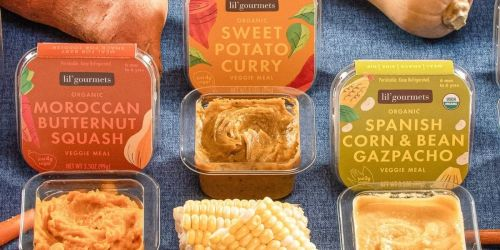 50% Off Lil' Gourmets Organic Baby Food at Target | Awesome Reviews