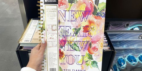 Stay Organized w/ Pembrook 12-Month Specialty Planners for Only $7.99 at ALDI