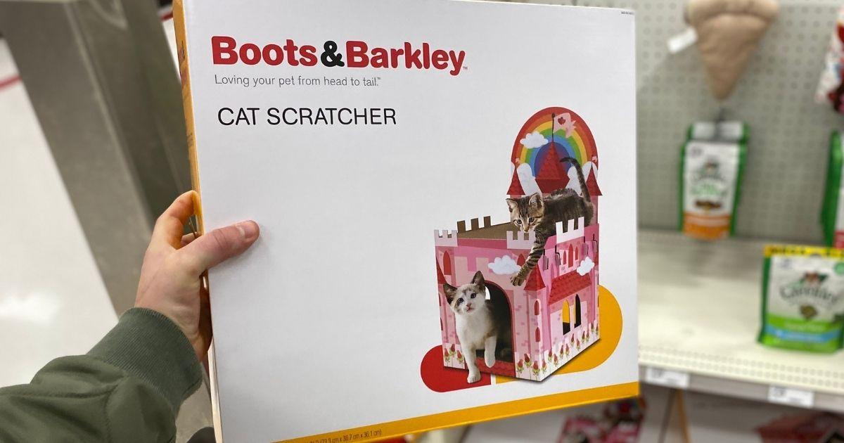 hand holding a cat scratcher box