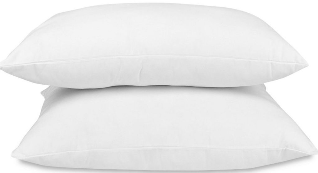 Two Tommy Bahama Pillows