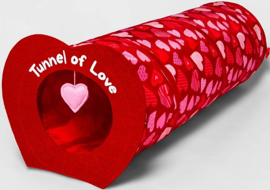 Tunnel of Love Cat Toy