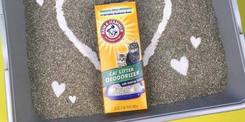 Arm & Hammer 20oz Cat Litter Deodorizer Just $1.38 Shipped on Amazon | Great Reviews