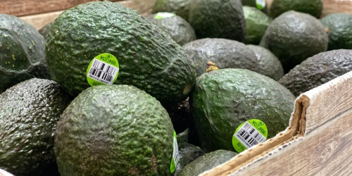 RARE 20% Off ALL Fresh Produce Target Circle Offer   Avocados Just 27¢ Each