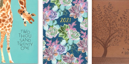 2021 Planners from $7.49 on Barnes & Noble (Regularly $15) | So Many Cute Options!