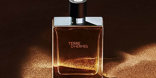 Hermes Terre D'Hermes Men's Cologne Only $59.99 Shipped for Costco Members