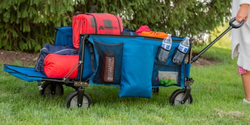 Ozark Trail Foldable Wagon w/ Tailgate Only $58 Shipped on Walmart.com