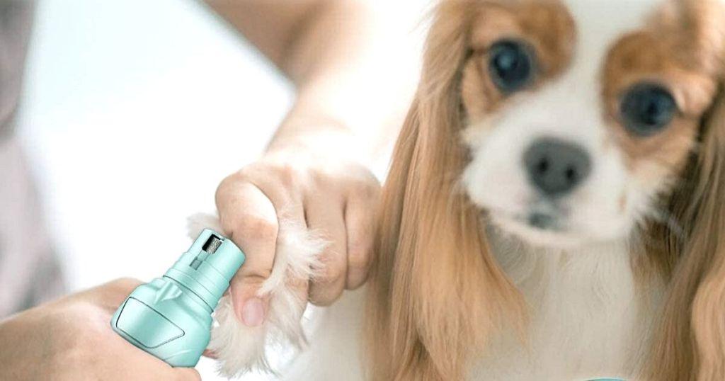 woman using green Petural nail grinder on dog's nails