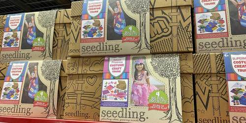 Seedling Craft Creator Trunks Only $14.91 on Sam's Club | 4 Fun Projects in Each Box
