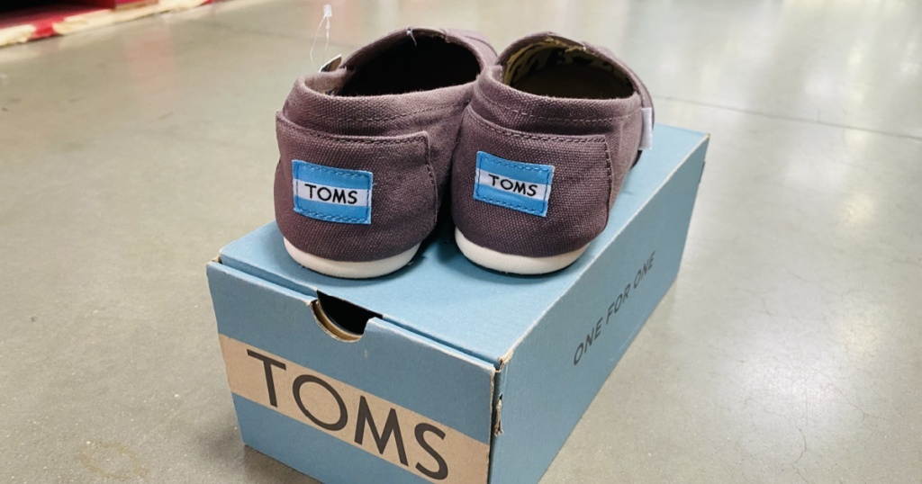 dark wine colored pair of toms womans canvas slides on box