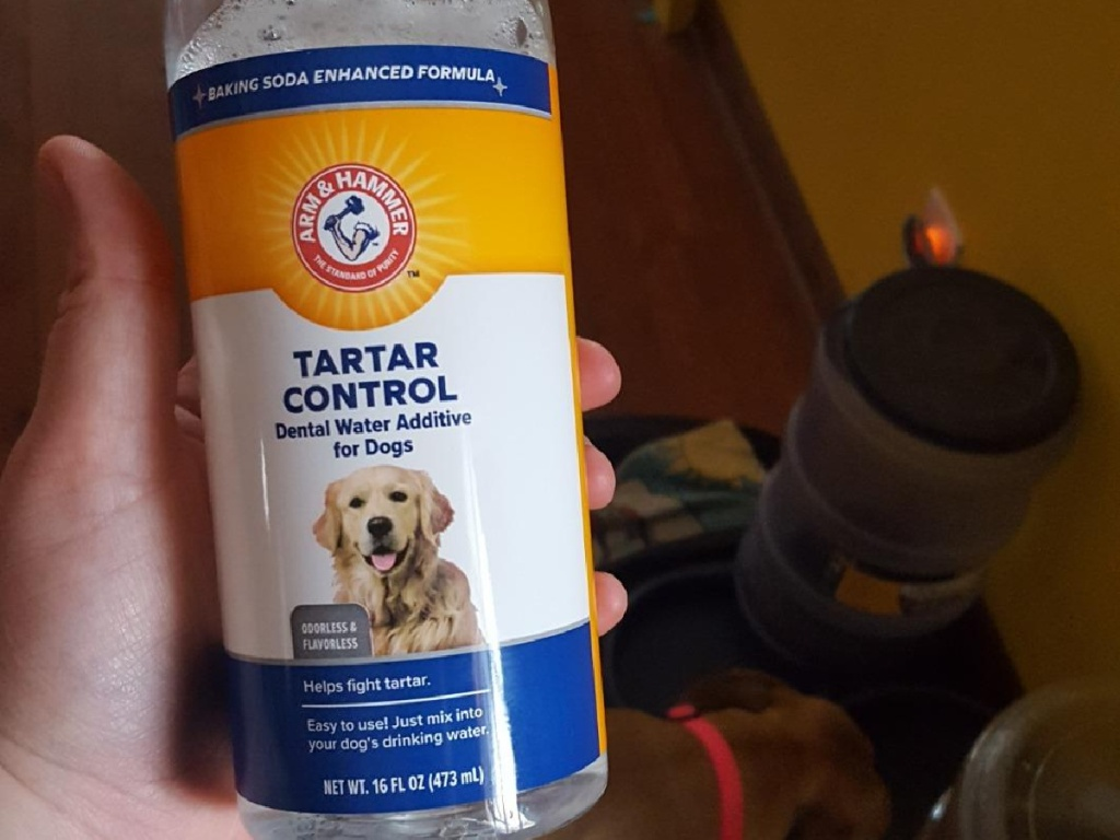 person holding dog water additive bottle