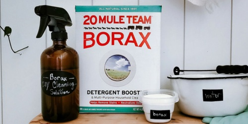 FOUR Borax Detergent Booster & Household Cleaner 4lb Boxes Only $12 Shipped on Amazon (Just $3 Each)
