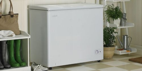 $100 Off Chest Freezers + Free Delivery for Costco Members