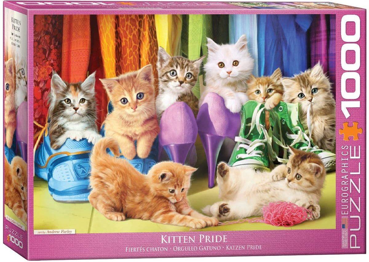 kitten puzzle box