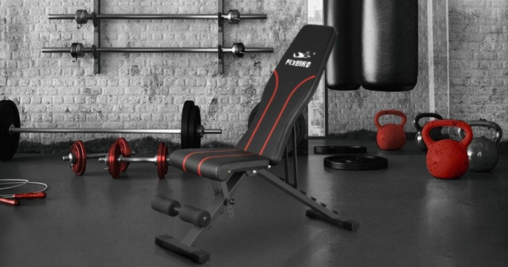 Flybird Home Gym