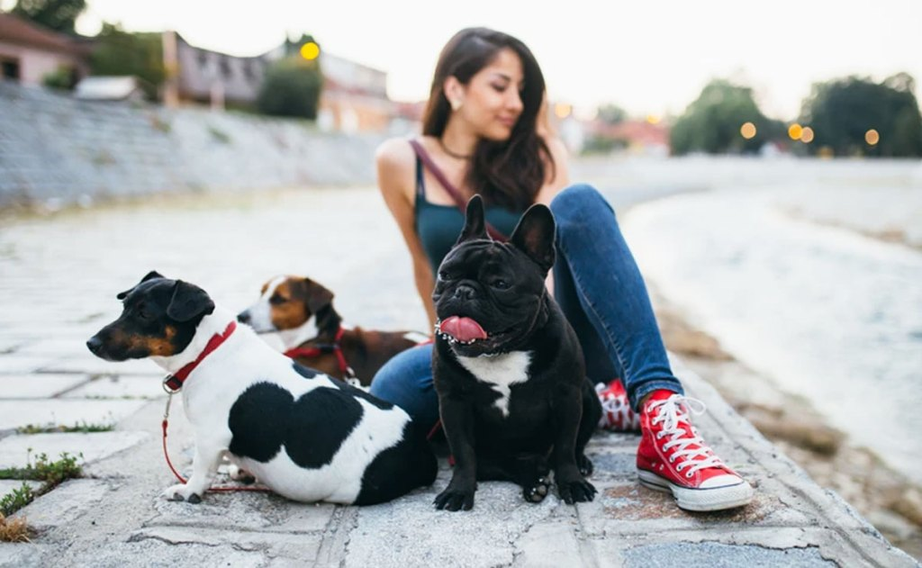 girl sitting on ground with three dogs on leashes