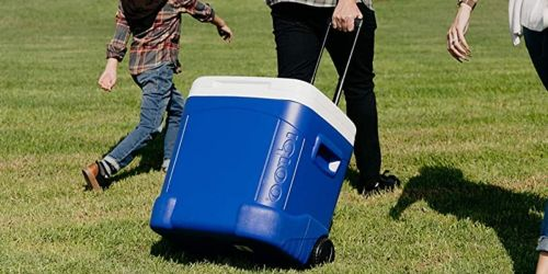 Igloo 60-Quart Rolling Cooler Just $24 on Amazon | Great Reviews