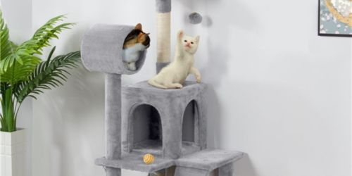51″ Cat Tree w/ Hammock & Scratching Post from $41.99 Shipped on Walmart.com (Regularly $55)