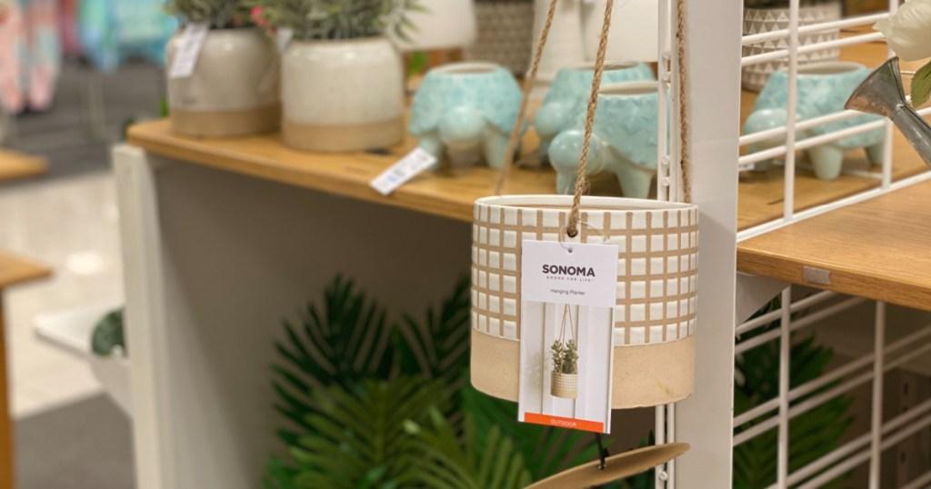 Sonoma Planter in Kohl's Store