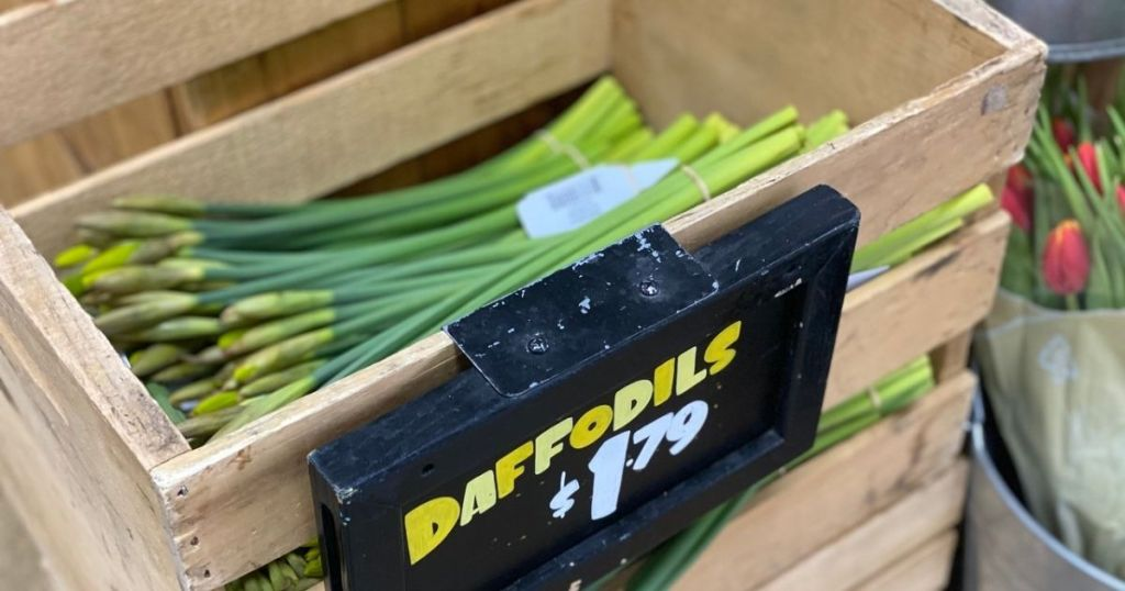 Trader Joe's Daffodils in a crate with sign