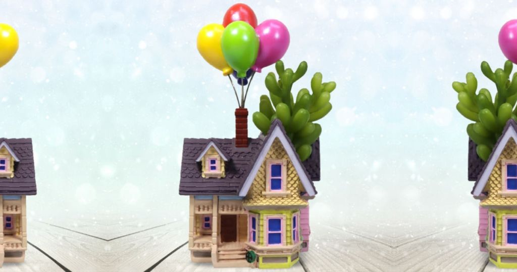 succulent inside a planter shaped like the house with balloons from the movie up
