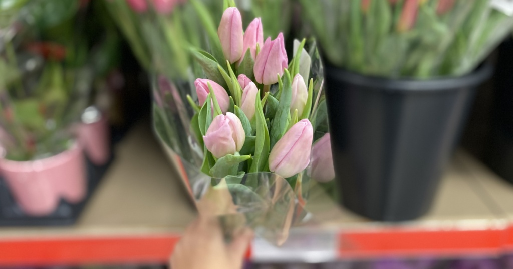 hand holding a fresh bouquet of tulips at ALDI
