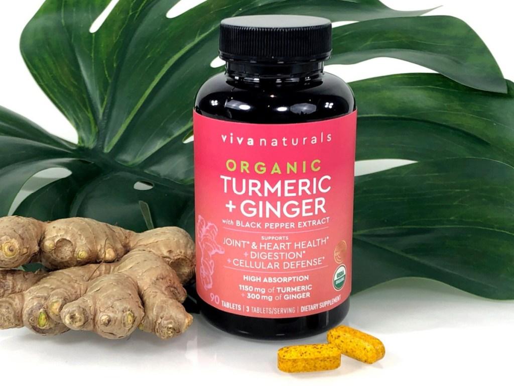 Viva Naturals Organic Turmeric Curcumin 90-Count Tablets