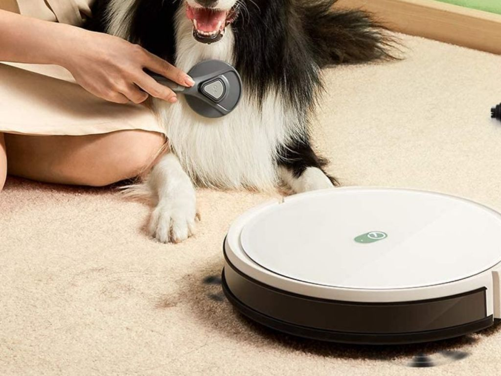 white robot vacuum cleaning up pet hair