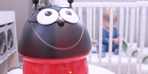 Ladybug Cool Mist Humidifier Only $23.99 on HomeDepot.com (Regularly $45)