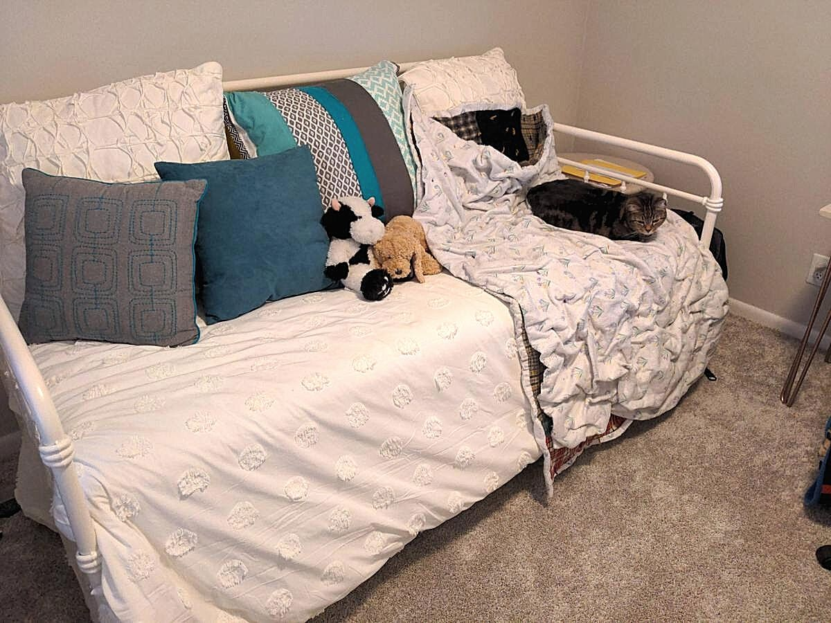 day bed with white comforter stuffed animals and cat on bed