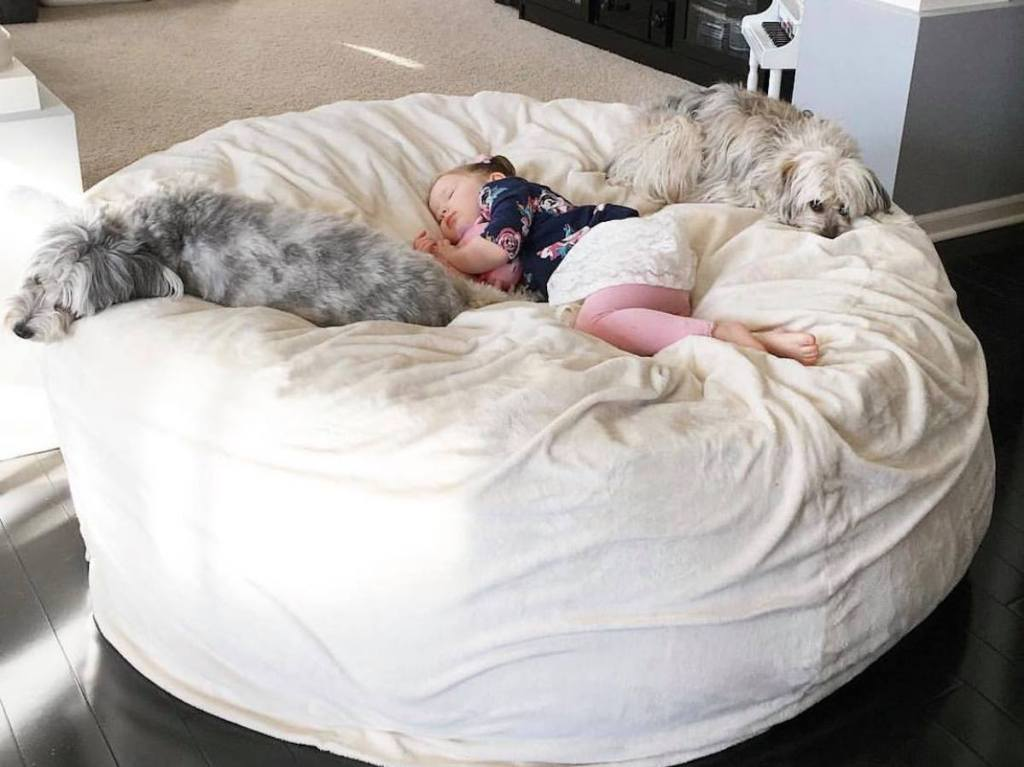 baby girl and two dogs asleep on giant white lovesac bean bag chair dupe