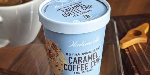 FREE Hudsonville Ice Cream Pint Coupon | Available in Select States