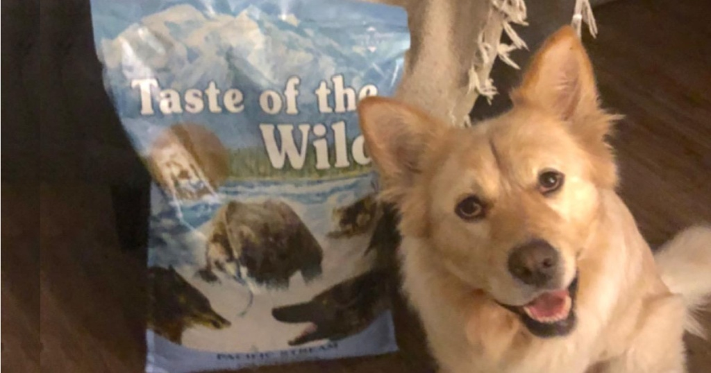 Dog next to a bag of Taste of the Wild Dog Food
