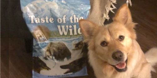 Taste of the Wild Dog Food 28lb Bag Only $32 Shipped on Amazon (Regularly $49)