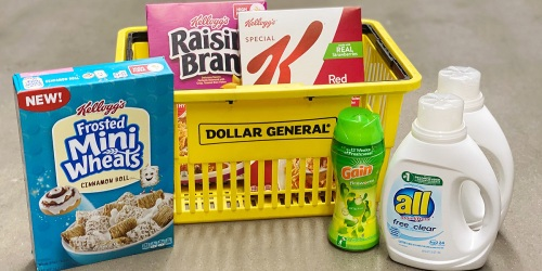 9 Household & Grocery Products Only $11.45 at Dollar General (Regularly $28.45) | Valid March 6th Only
