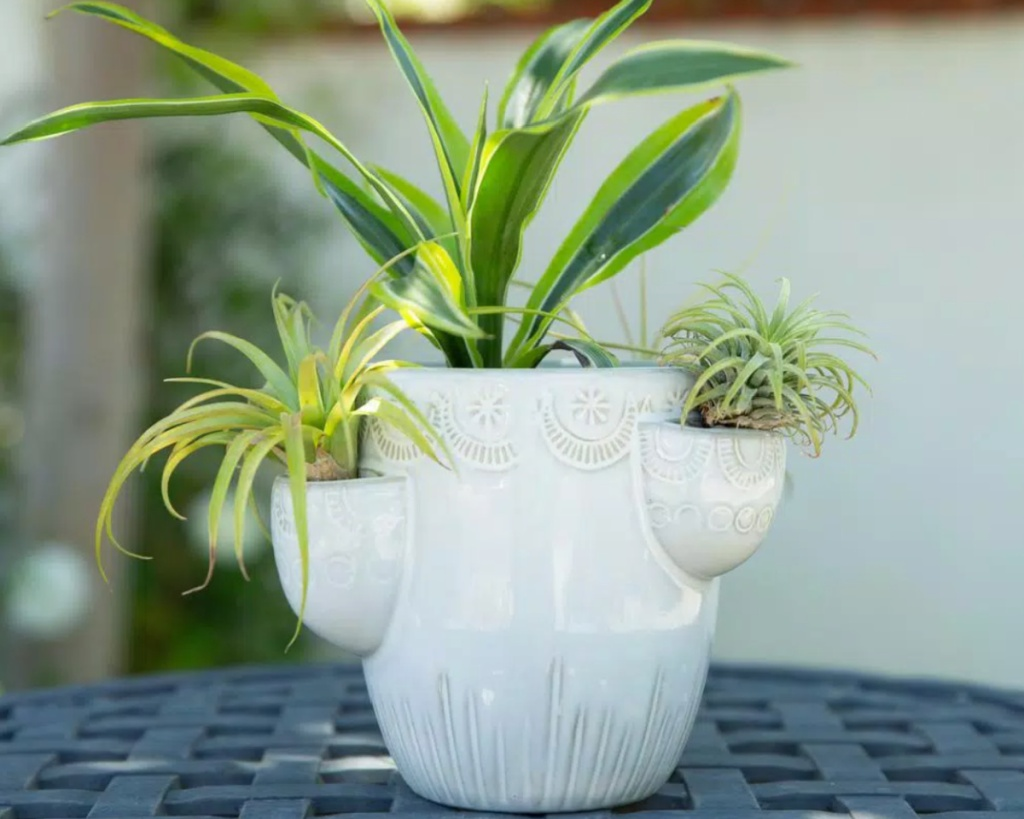 small white planter with plant in it