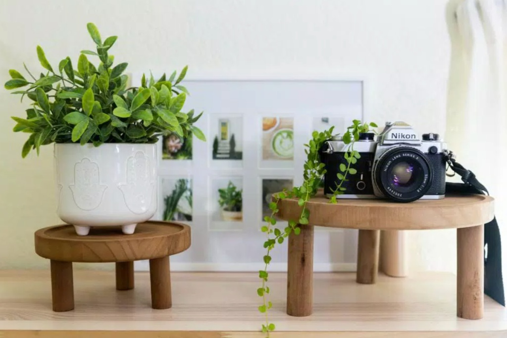 two wooden plant stands