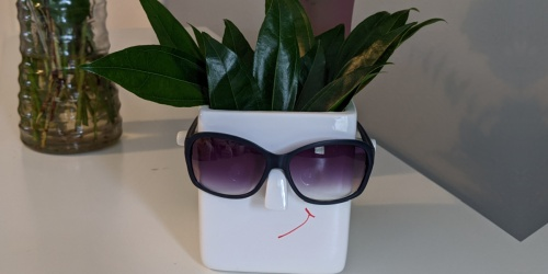 Novelty Face Planter Only $9 Shipped on Amazon | Holds Your Plant AND Glasses