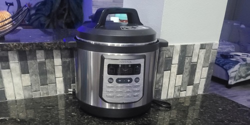 Insignia Multi Cooker Just $39.99 Shipped on BestBuy.com (Regularly $120) | Slow Cook, Sear, Sauté & More!