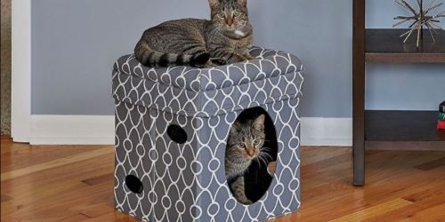 Up to 75% Off Pet Essentials on Chewy.com | Includes Beds, Furniture & Home Goods