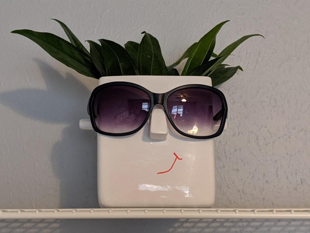 face planter on a shelf