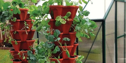 Stackable Planters from $17.99 on Zulily.com | Perfect for Small Spaces