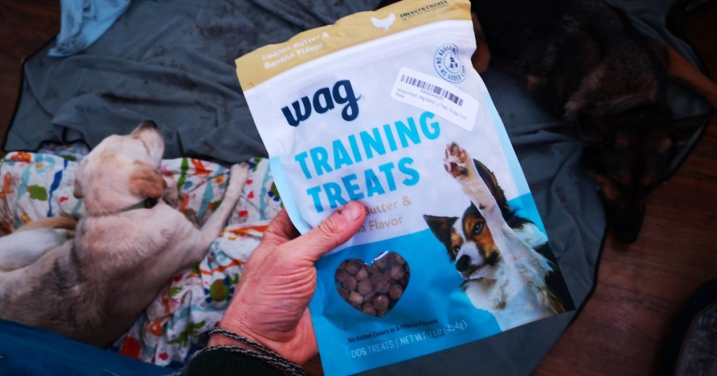 hand holding bag of dog training treats and dog sitting on floor in background