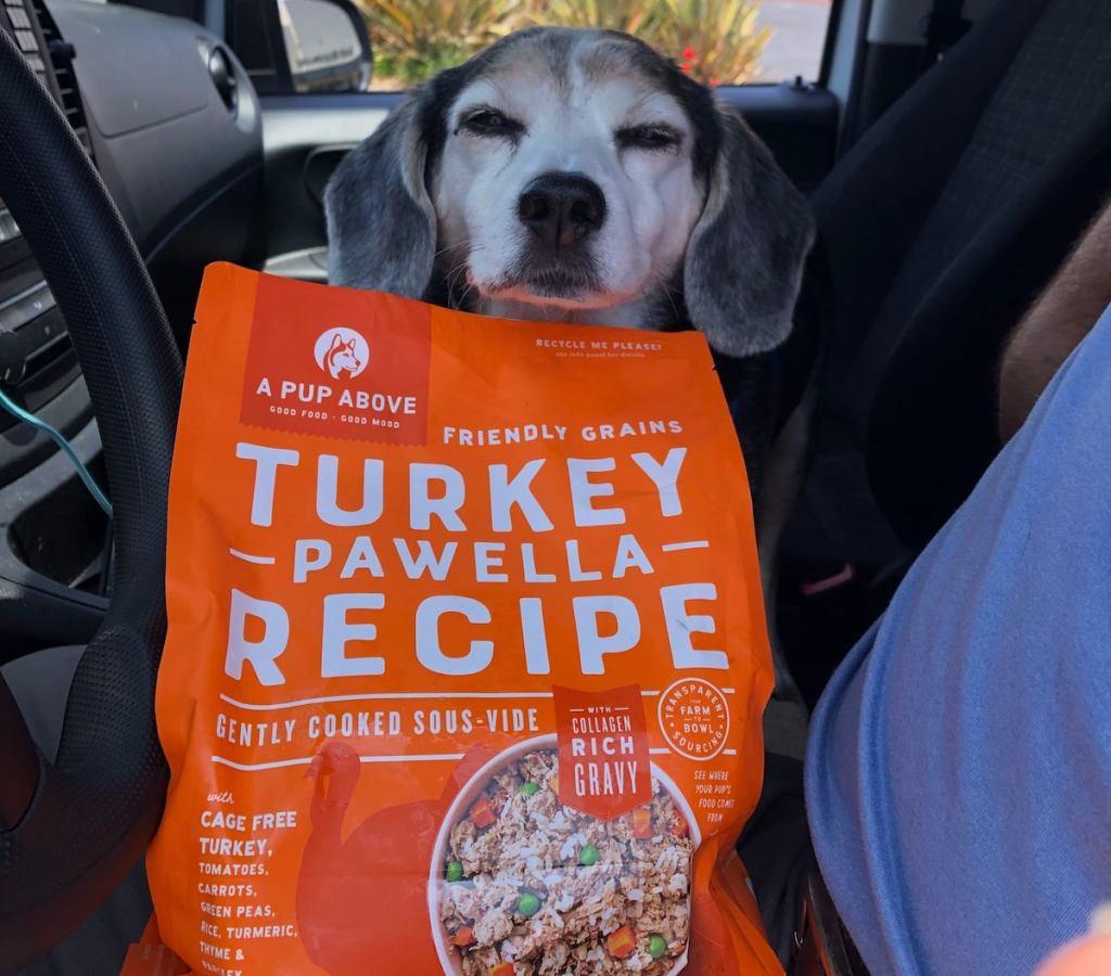 dog with head over orange bag of dog food delivered