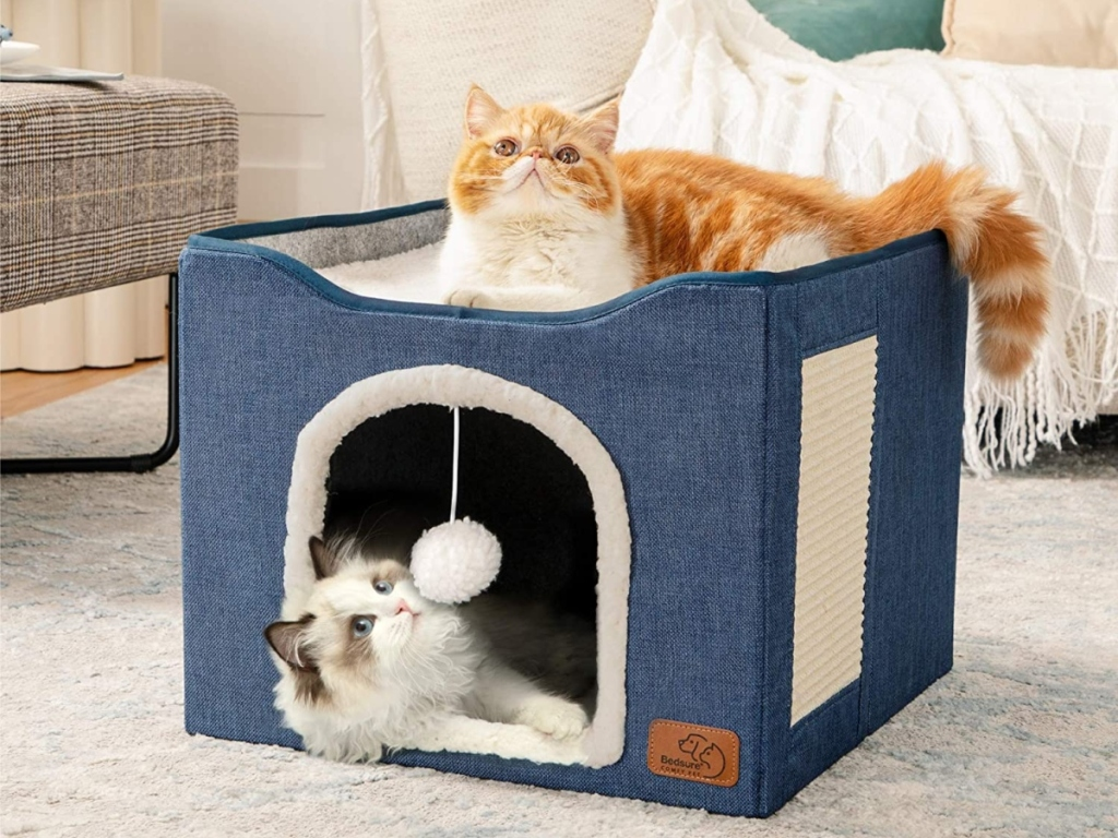 2 cats resting in/on a cat cube
