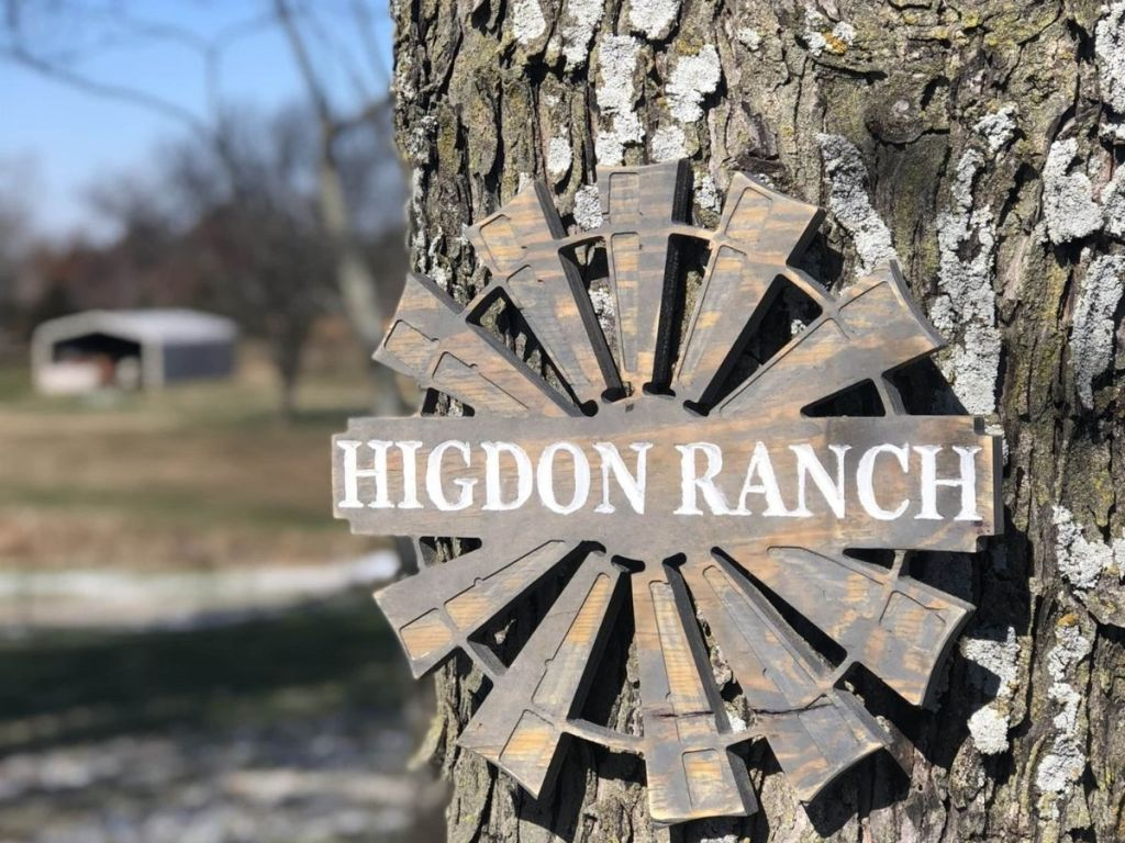 Windmill personalized sign hanging on tree