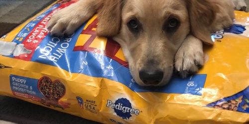 Pedigree Puppy Food 3.5lb Bag Only $2.52 Shipped on Amazon