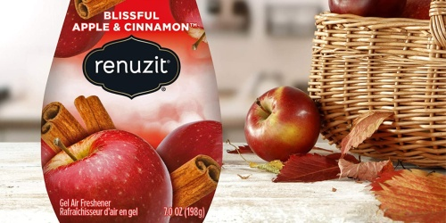 Renuzit Gel Air Freshener 12-Pack Only $7.93 Shipped on Amazon (Just 66¢ Each)