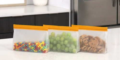 Reusable Stand-Up Food Storage Bags 10-Count Just $19.98 | Freezer-Safe, Leakproof & BPA-Free