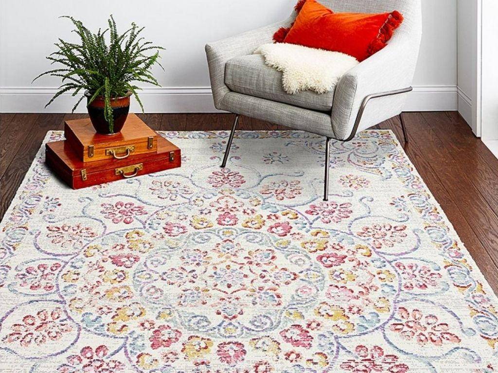 5x7 Area Rug with chair and houseplant on it