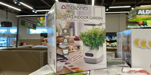 Smart Indoor Garden Only $39.99 at ALDI | Timed Lights & Watering System